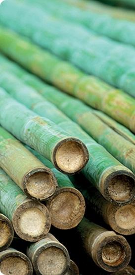 Възглавница White Boutique - Eco Bamboo
